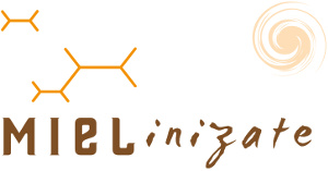 Mielinizate, miel y productos apícolas